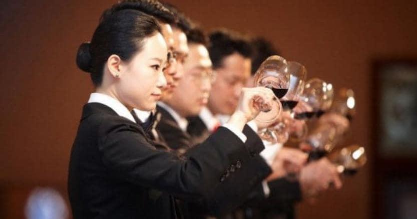 L'enologa cinese: solo 500 cantine, ma siamo secondi al mondo per ettari di  vigne - Il Sole 24 ORE