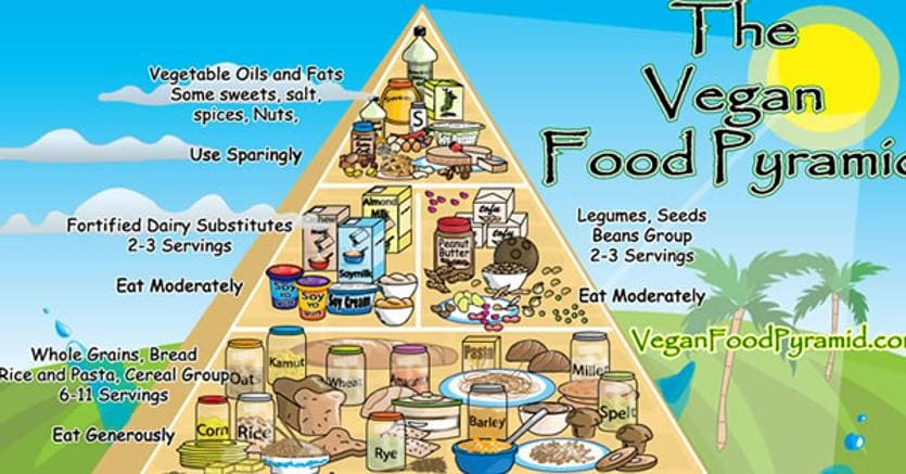 dieta militare per vegetariani