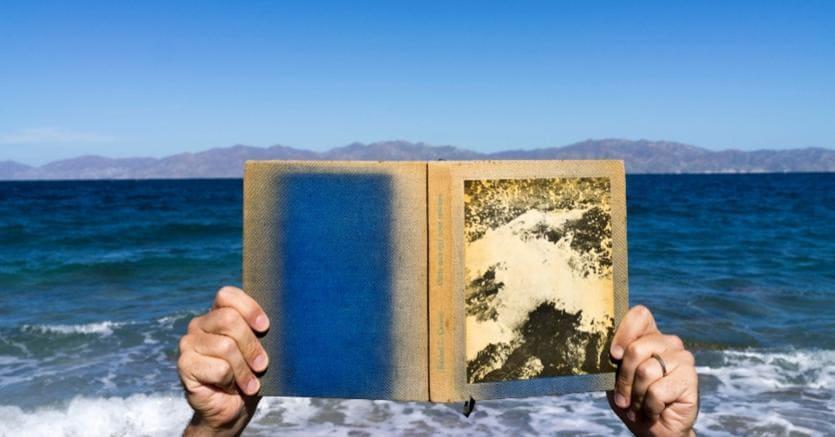 Adrien Missika, Isla Jacques Cousteau, 2019. Stampa D'achivio montata su alluminio. 4.500 Euro. Galleria Proyectos Monclova