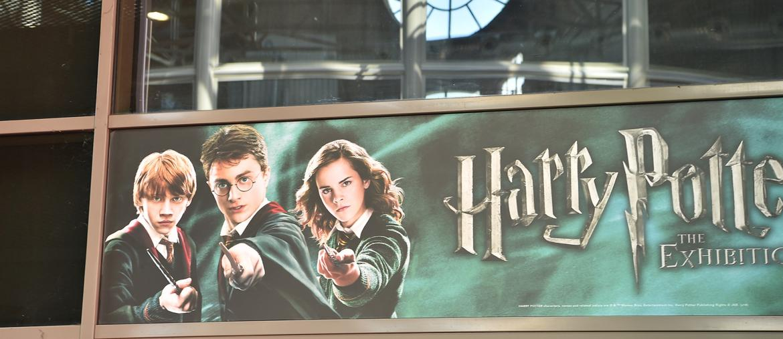 L'ingresso alla mostra di Harry Potter (Fotogramma)