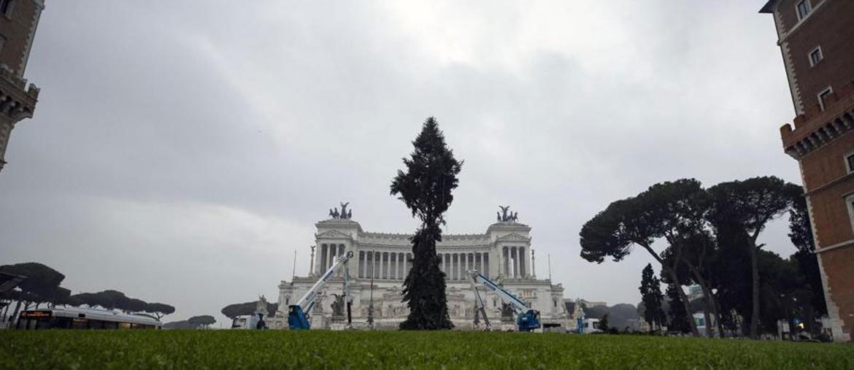 L'albero di Natale a piazza Venezia, nel centro a Roma, già ribattezzato come il suo predecessore 'Spelacchio' a Roma, 3 dicembre 2018. ANSA/MASSIMO PERCOSSI