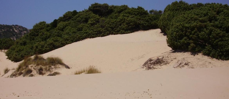 Le dune di Chia (Ansa)