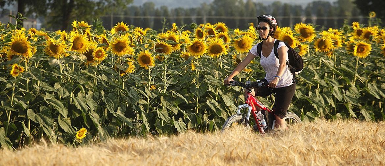 In bici nei pressi di Spello (PG), Umbria(Foto:Enrico Caracciolo)