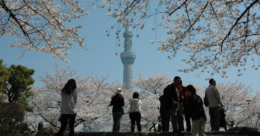 (Foto: Ente Turismo Tokyo)