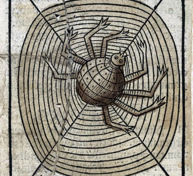"""Anonimo, """"A spider on its web"""", 1547 Londra. Wellcome Collection"""