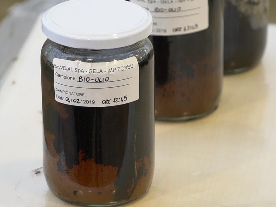 Alcuni campioni di bio-petrolio