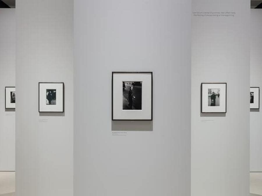 Installation view, Diane Arbus: in the beginning at Hayward Gallery. Copyright the artist, courtesy Hayward 2019. Photograph by Mark Blower