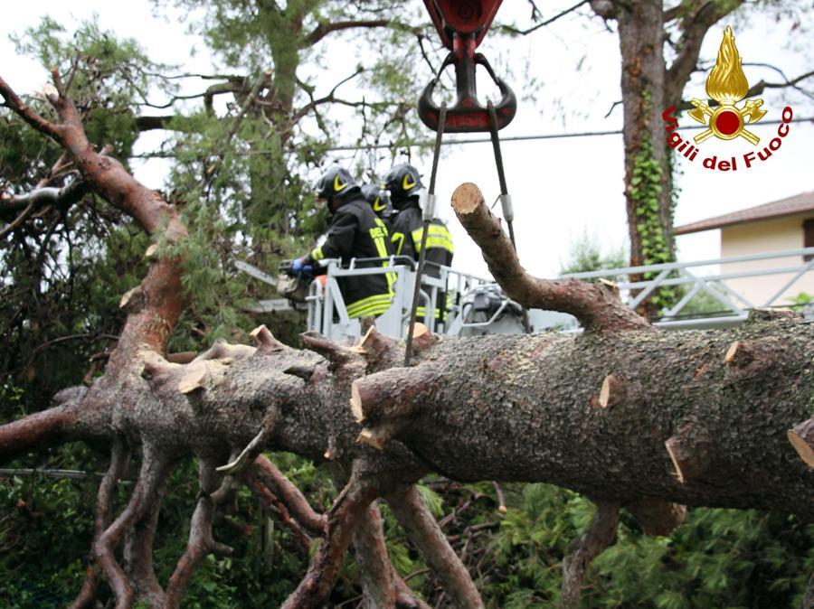 I danni provocati dal maltempo che ha colpito violentemente la provincia di Ancona. (ANSA/ VIGILI DEL FUOCO)