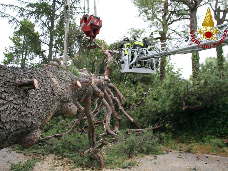 I danni provocati dal maltempo che ha colpito violentemente la provincia di Ancona. (ANSA/ VIGILI DEL FUOCO)+