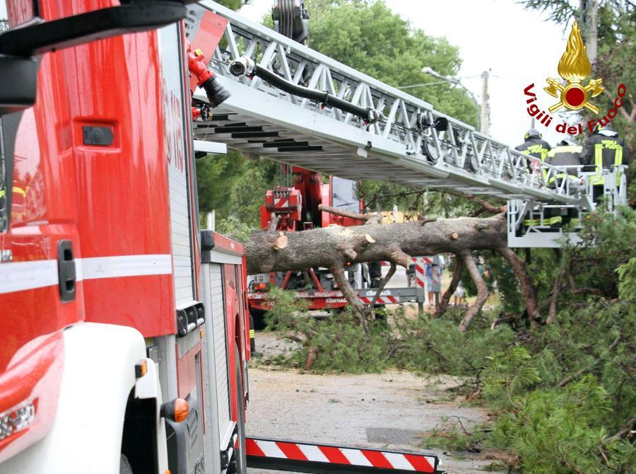 I danni provocati dal maltempo che ha colpito violentemente la provincia di Ancona, 10 luglio 2019. (ANSA/ VIGILI DEL FUOCO)