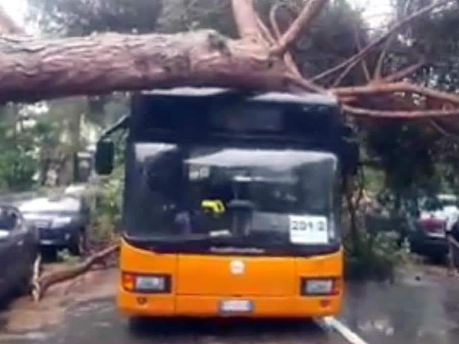 Un'immagine, tratta dal profilo Facebook del Comune di Cervia, che mostra i danni causati dalla tempesta abbattutasi su Milano Marittima. (PROFILO FACEBOOK DEL COMUNE DI CERVIA)
