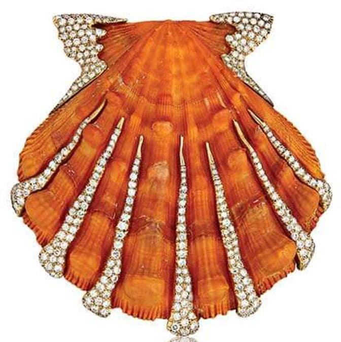 Nel 1940 Fulco di Verdura acquista una collezione di conchiglie dall'American Museum of Natural History di New York e le monta in oro e gemme