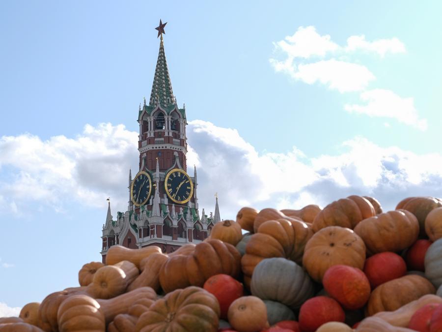 Zucche in Piazza Rossa a Mosca per il festival d'autunno (REUTERS/Evgenia Novozhenina)