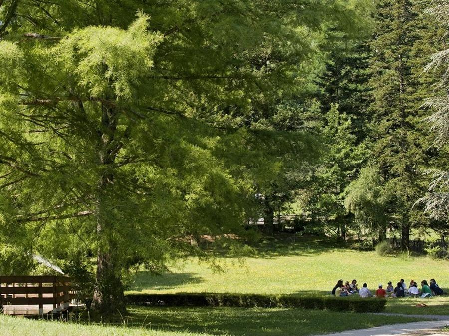 La natura e il bello sono elementi essenziali del progetto