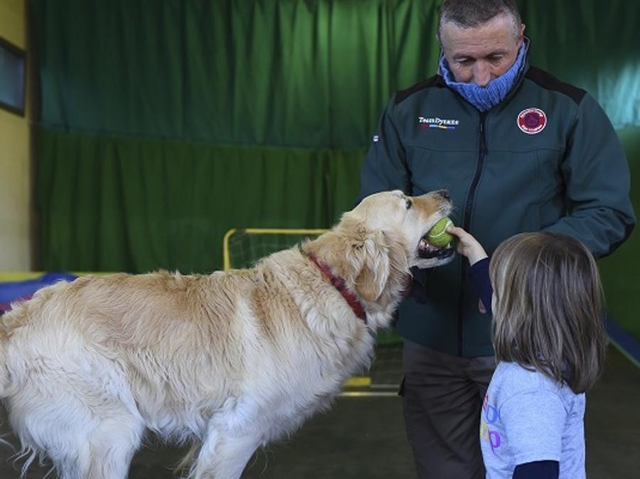 I Dynamo Dogs sono golden retriever nati al camp e appositamente addestrati a relazionarsi con bambini con gravi patologie