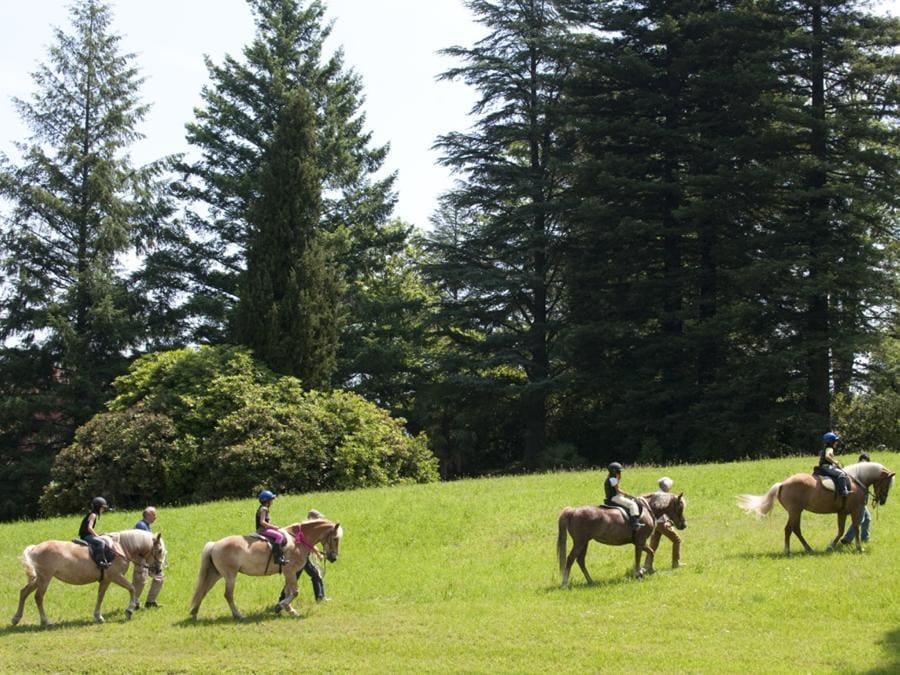 L'attività a cavallo in maneggio e all'aperto emoziona. È allo studio una sella per bambini e ragazzi ipotonici