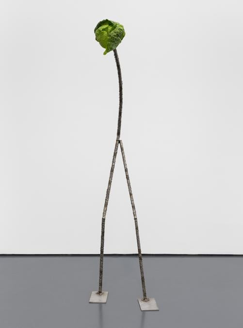 PEDRO CERA - Luca Francesconi - Untitled - 2016 - Acciao inossidabile, vegetali - 162 x 45 x 45 cm - Courtesy dell'artista e Pedro Cera, Lisbona