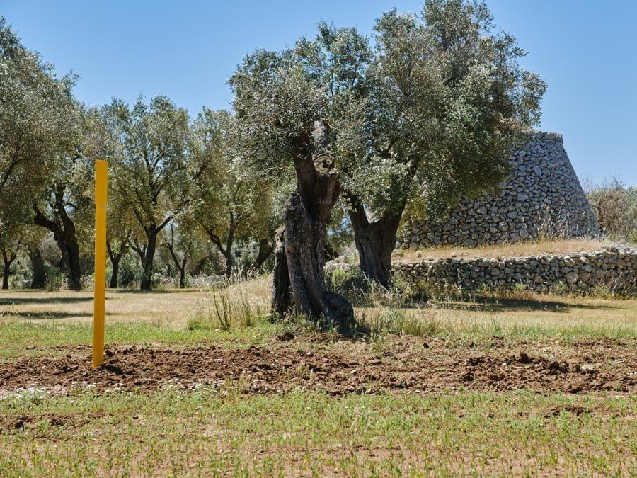Terreni ripristinati in Italia maggio 2020