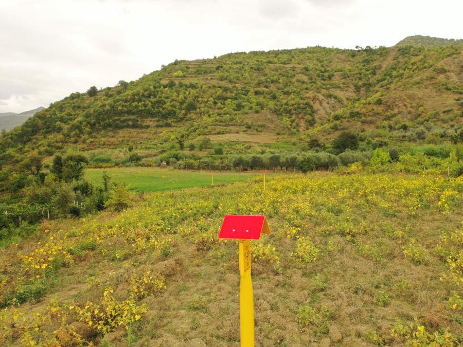 Terreni ripristinati in Albania ottobre 2020