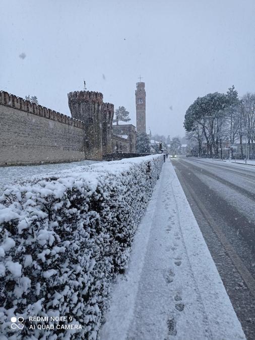 Un particolare del Castello di Roncade a Treviso, 28 dicembre 2020. ANSA/Gianni Favero