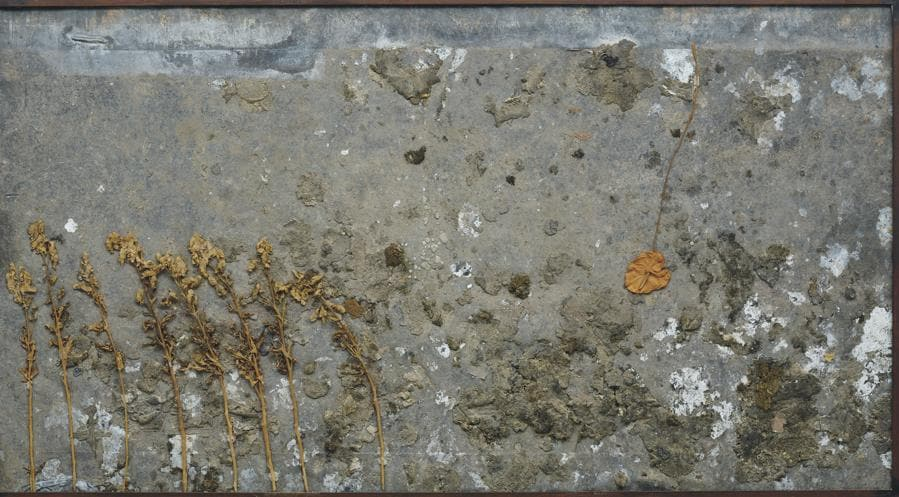 Anselm Kiefer, Anthurie, 1987-1991, mixed media on lead, 131.0 x 242.0 cm (515⁄8 x 951⁄4 in.) , Estimate: £300,000 - 500,000