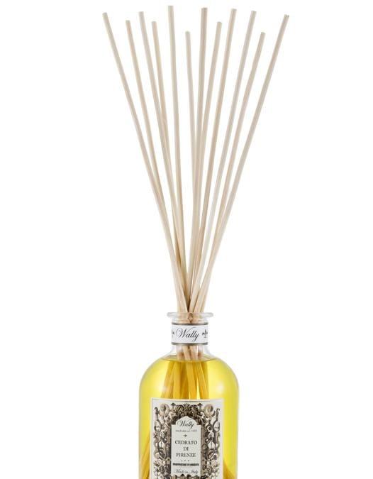 Wally 1925, Cedrato di Firenze, il cedro introdotto nella collezione di agrumi dei Giardini Medicei proviene dalle campagne di Pietrasanta ed il più odoroso e soave tra tutti i limoni