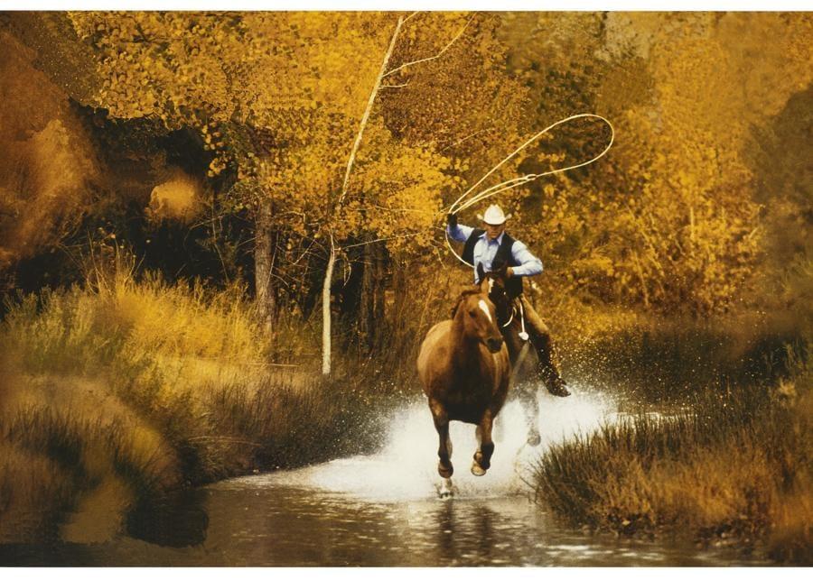Lot 19A, Prince, Untitled (Cowboy) (per gentile concessione di Christie's)