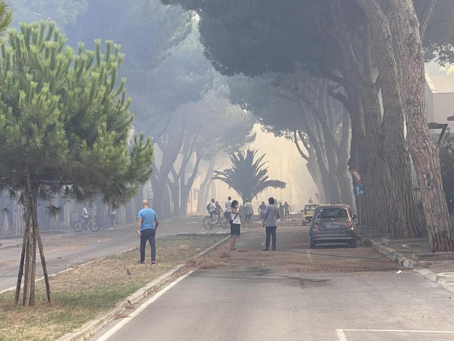 Pescara. (ANSA/LORENZO DOLCE)