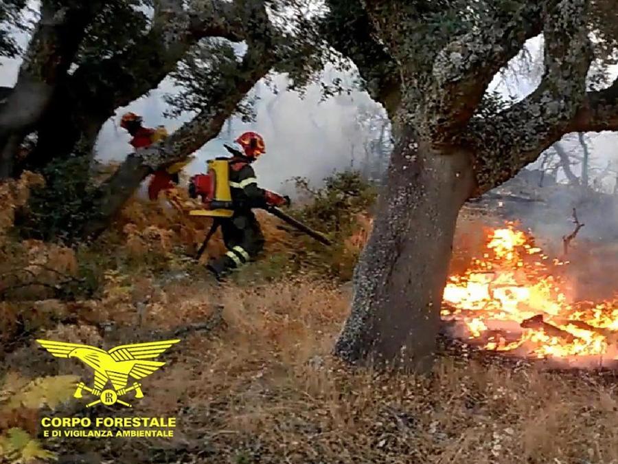 Un vigile del corpo forestale al lavoro per spegnere l'incendio divampato a Pula (Cagliari) (ANSA/CORPO FORESTALE E VIGILANZA AMBIENTALE)
