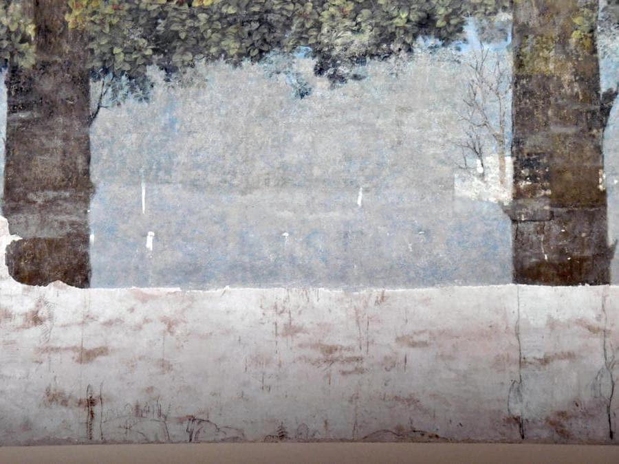 Due dei disegni a carboncino, tracce di disegni preparatori, attribuiti a Leonardo da Vinci, nella Sala delle Asse dipinta dallo stesso Leonardo. È  la sala più rappresentativa del castello degli Sforza e  riapre eccezionalmente al pubblico dopo il 6 anni di restauri. ANSA/DANIEL DAL ZENNARO