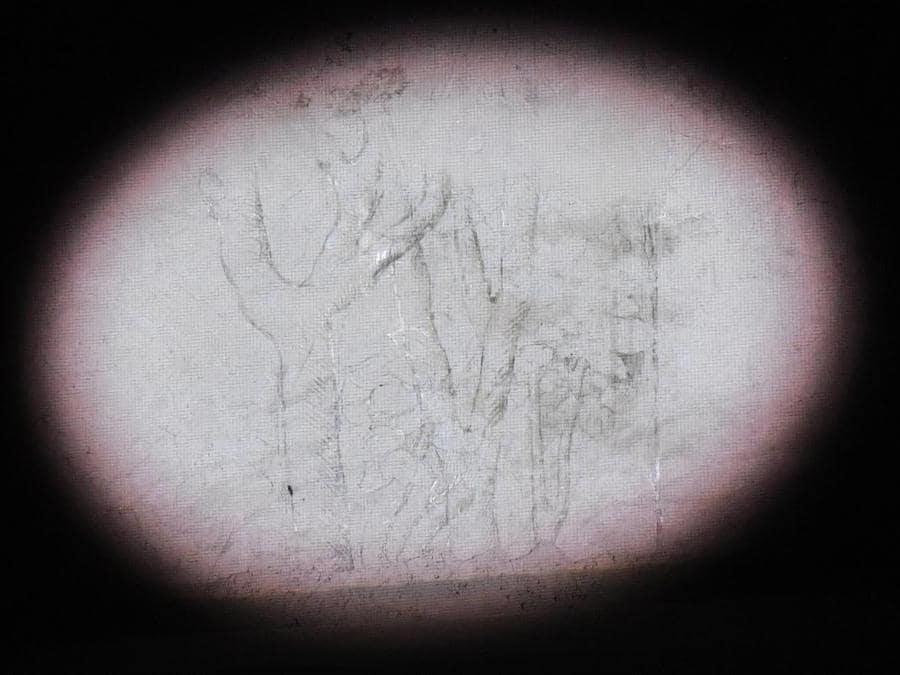 Un riflettore illumina uno dei disegni a carboncino, tracce di disegni preparatori, attribuiti a Leonardo da Vinci, nella Sala delle Asse dipinta da Leonardo  nel Castello Sforzesco di Milano. ANSA/DANIEL DAL ZENNARO