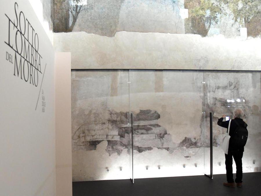 Un visitatore scatta una foto del Monocrome, un disegno a carboncino, tracce di disegni preparatori, attribuiti a Lenardo da Vinci, nella Sala delle Asse . ANSA/DANIEL DAL ZENNARO