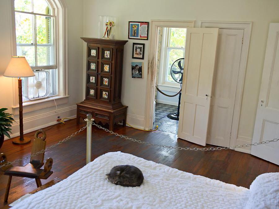 Un gatto dorme sul letto di casa e del museo dell'autore Ernest Hemingway, a Key West, in Florida, dove Hemingway ha vissuto e scritto per più di dieci anni. Il museo ospita circa 40-50 gatti con sei dita, discendenti del primo gatto di Hemingway.(Photo by KAREN BLEIER / AFP)