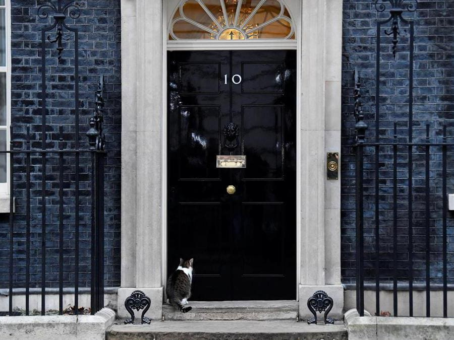 Larry. il gatto di Downing Street, Londra. (REUTERS/Toby Melville)