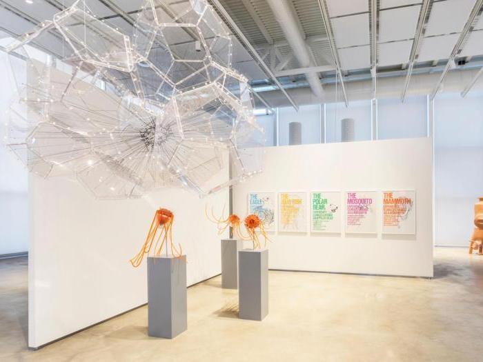 L'arte è imprevedibile al nuovo Centro Arti e Scienze Golinelli
