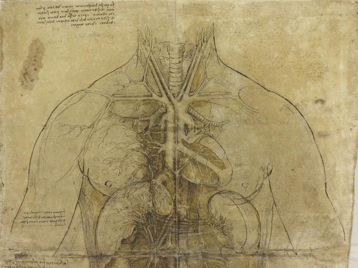 Leonardo, una vita di disegni