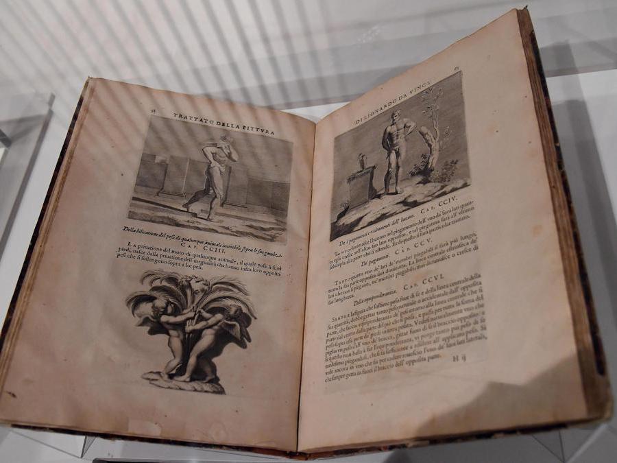 """""""Leonardo da Vinci. La scienza prima della scienza """". Il trattato del dipinto di Leonardo da Vinci. (Ansa / Ettore Ferrari)"""