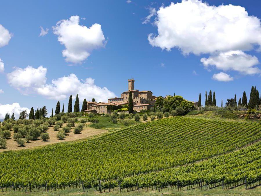 Castello Banfi (Toscana)