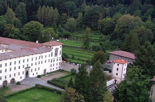 TOSCANA: Arboreto Sperimentale di Vallomborosa, Vallombrosa, Arezzo: una foresta perlopiù di conifere, di grande suggestione, con esemplari enormi. All'interno, anche un Museo Dendrologico, con semi, legni e altre porzioni di alberi