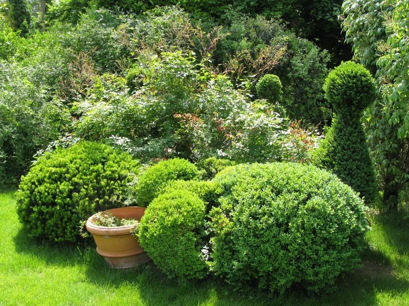 FRIULI VENEZIA GIULIA: Giardino-vivaio Botanica di Santa Marizza, a Vario (UD): un incantevole giardino, con erbe aromatiche, piante mediterranee, erbacee perenni e rose, un laghetto, alimentato da una sorgiva, racchiuso da un piccolo boschetto di bambù, e molte piante da ombra, fra cui feci ed edere, specialità del vivaio