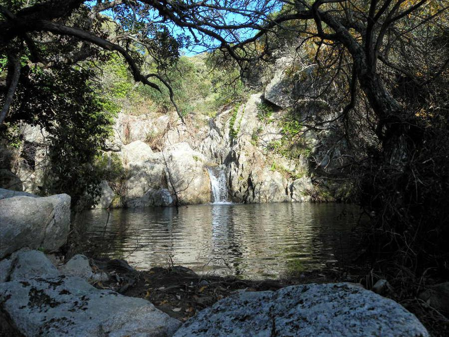 """SARDEGNA: Valle del Rio Cannas, Cagliari: La gola del Rio Cannas/Picocca è un territorio di ripide e inaccessibili pareti granitiche scavate dall'acqua nel tempo, sul cui fondo fra fitti oleandri scorre un fiume dalle acque limpidissime. Dopo un lungo percorso tra le montagne del Sarrabus (nella Sardegna sud-orientale) il Rio Cannas affluisce nel Rio Ollastu ed entrambi i fiumi perdono il loro nome originale e diventano così il Rio Picocca che prosegue verso la costa. Il torrente Picocca in estate e in autunno è quasi asciutto, ma con l'arrivo delle piogge invernali può gonfiarsi fino a rendersi pericoloso. Lungo il percorso sono presenti numerosi monumenti naturali, come per esempio """"l'Arco dell'Angelo"""", sito roccioso che si trova alla confluenza del torrente con il Rio Cannas, oppure i numerosi massi arrotondati che si ergono imponenti lungo il canyon. La vegetazione presente lungo i rii e quella tipica della macchia maditerranea. Spiccano tuttavia, per maestosità e fioriture, i numerosi esemplari di oleandro (Nerium oleander) che hanno colonizzato gran parte delle sponde dei torrenti. Poco distante dalla valle del rio Cannas/Picocca, si trova il Parco Naturale dei Sette Fratelli, tra i più estesi parchi della Sardegna, ricco di endemismi e particolarità vegetali e faunistiche. Le montagne sono ricoperte per la maggior parte da una rigogliosa lecceta e da querce da sughero e sono l'habitat naturale del cervo sardo. Qui vivono anche aquile Reali, il gatto selvatico, la martora, il cinghiale, il muflone e il daino."""