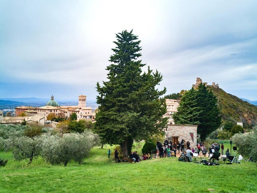 Concerto fra gli olivi a Trevi (Pg)