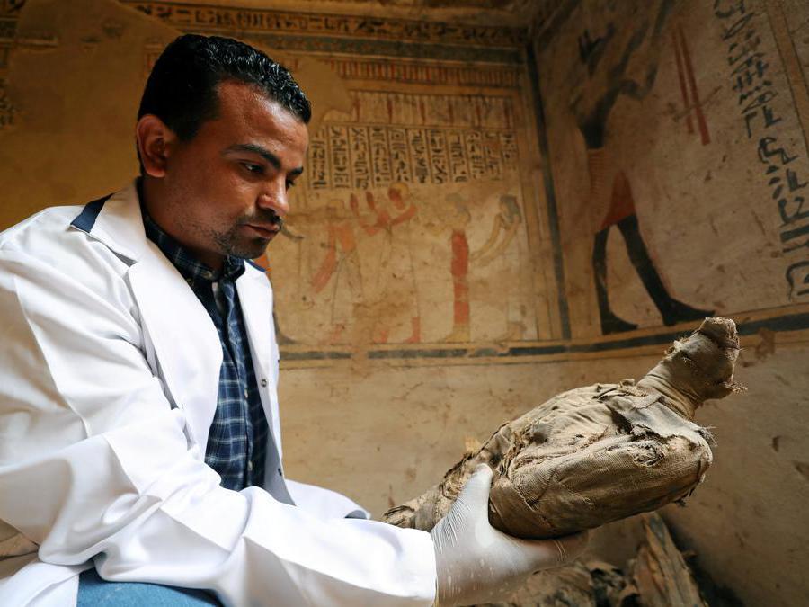 Un archeologo con  un antico uccello mummificato, trovato all'interno del sito di sepoltura appena scoperto, Tomba di Tutu, ad al-Dayabat, Sohag, Egitto. (Reuters/Mohamed Abd El Ghany)