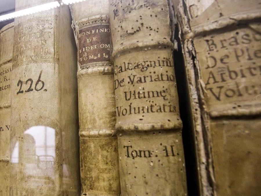 I volumi della biblioteca (ANSA/GIUSEPPE LAMI)