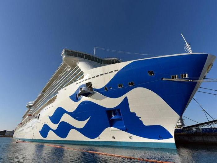 Le navi di Fincantieri