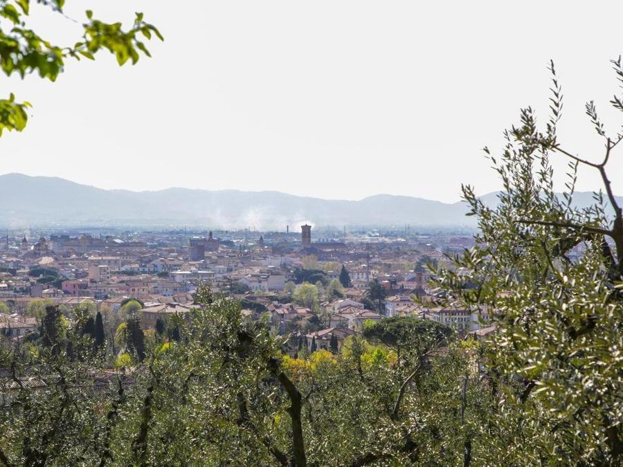 Veduta di Prato (foto di Ivan D'Ali)