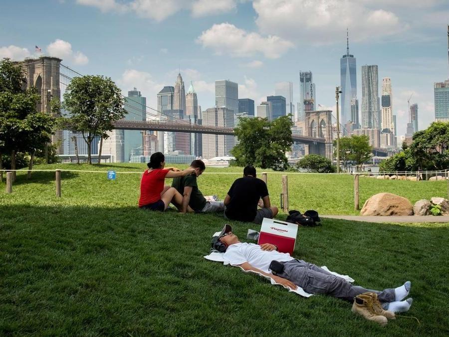 I prati del Brooklyn Bridge Park (Drew Angerer/Getty Images/AFP)