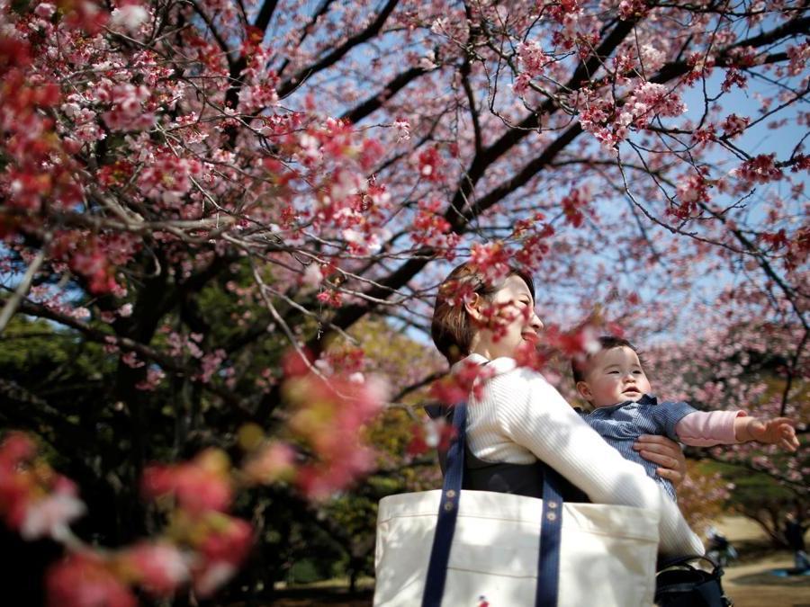 Shinjuku Gyoen National Garden a Tokyo (REUTERS/Issei Kato)