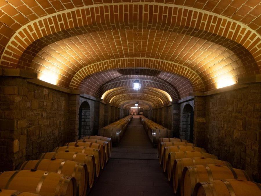 San Giustino Valdarno, Il Borro. Uno dei corridoi della vastissima cantina (Credit: Franco Sarcina)