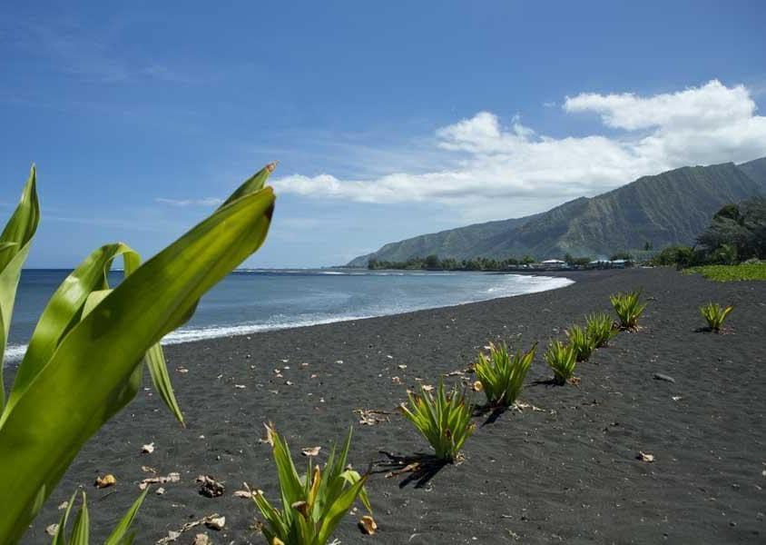 La natura rigogliosa e selvaggia di Tahiti ha permesso di dare forma a numerosi giardini botanici e percorsi verdi (PH Tahiti Tourisme)